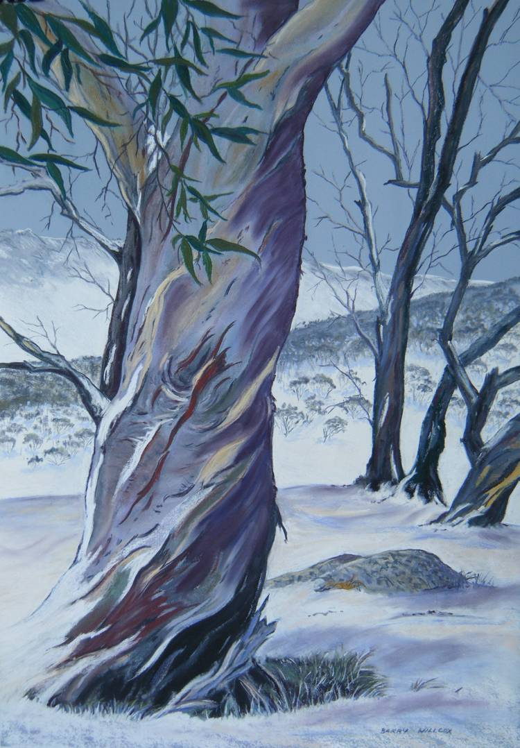 Barry Willcox - Alpine Artist