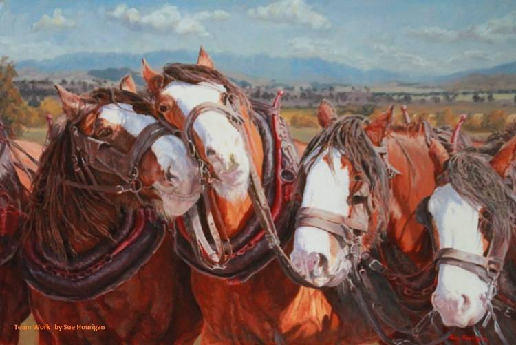 Sue Hourigan - Alpine Artist